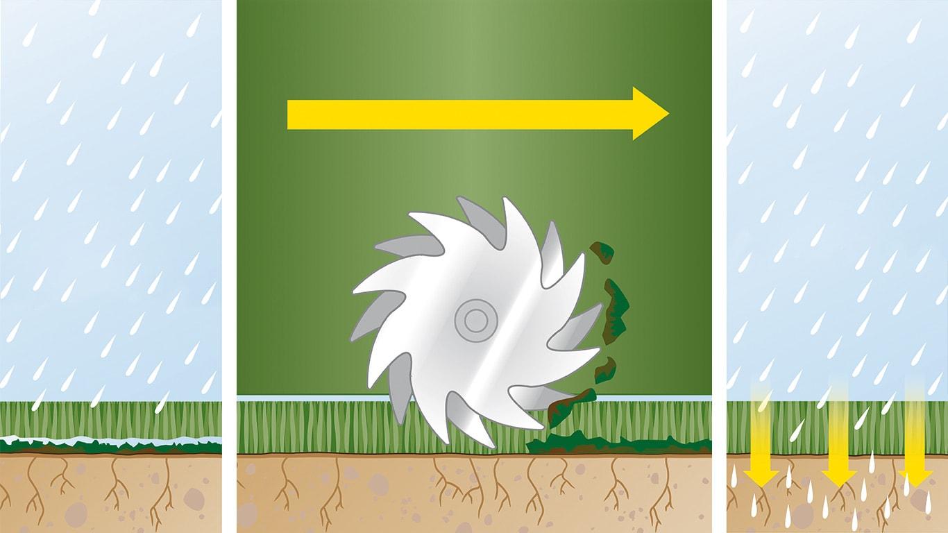 Sig farvel til mos: Det kræver omhu at skabe og vedligeholde en sund græsplæne. Det omfatter regelmæssig vertikalskæring en proces, hvor vissent græs og mos fjernes fysisk, så næringsstofferne kan komme ned
